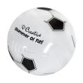 "14"" Soccer Beach Ball"